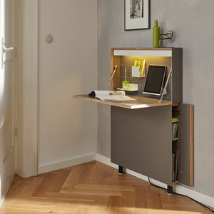 Flatmate Wall Desk - Mueller - Do Shop