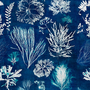 Algae Navy Blue Collectables Wallpaper - MINDTHEGAP - Do Shop