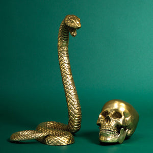 Wunderkammer Snake - Don't Step On Me - Diesel - Seletti - Do Shop