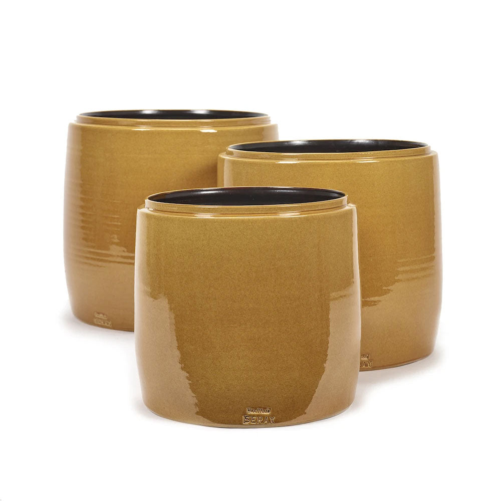 Honey Plant Pot