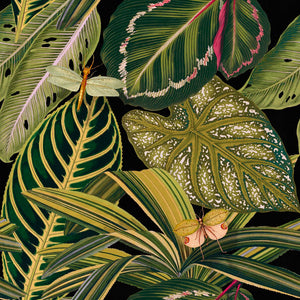 Amazonia Wallpaper by MINDTHEGAP | Do Shop