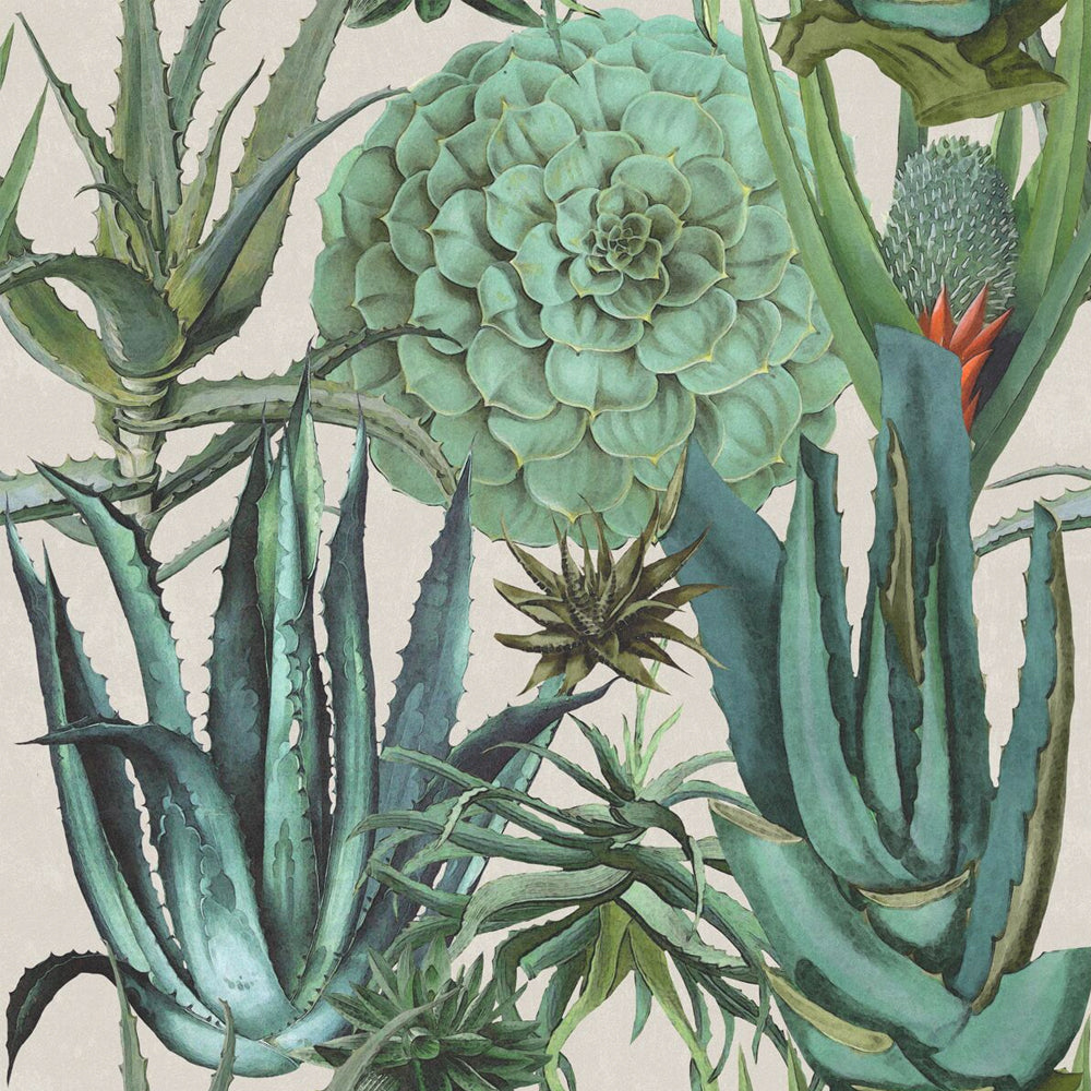 Succulentus Wallpaper by MINDTHEGAP | Do Shop