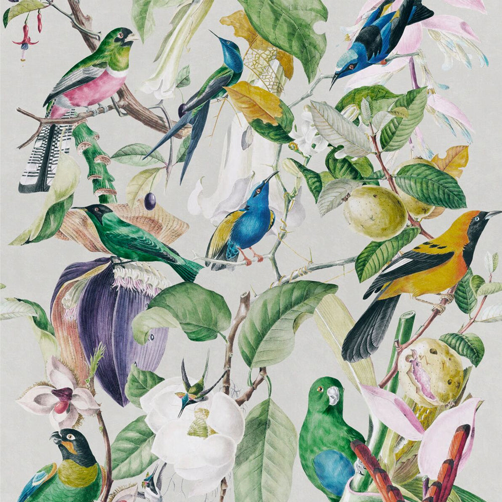 Tropical Birds Wallpaper by MINDTHEGAP | Do Shop