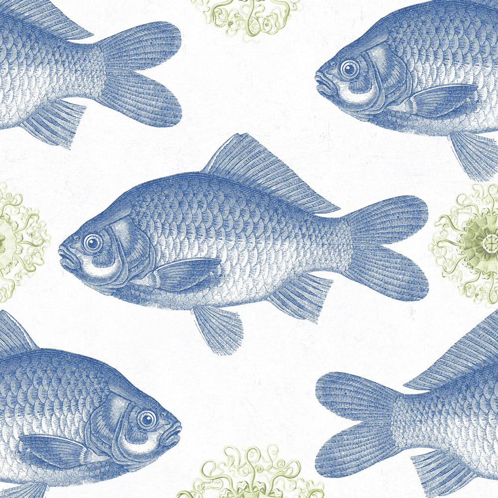 Fish Blue Wallpaper - MINDTHEGAP - Do Shop
