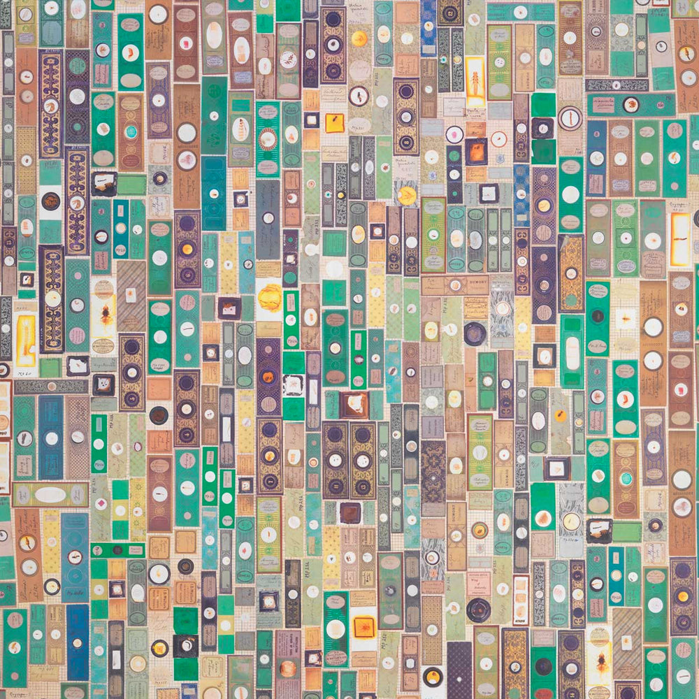 Microscopic Slides Wallpaper by Mr & Mrs Vintage - NLXL LAB - Do Shop