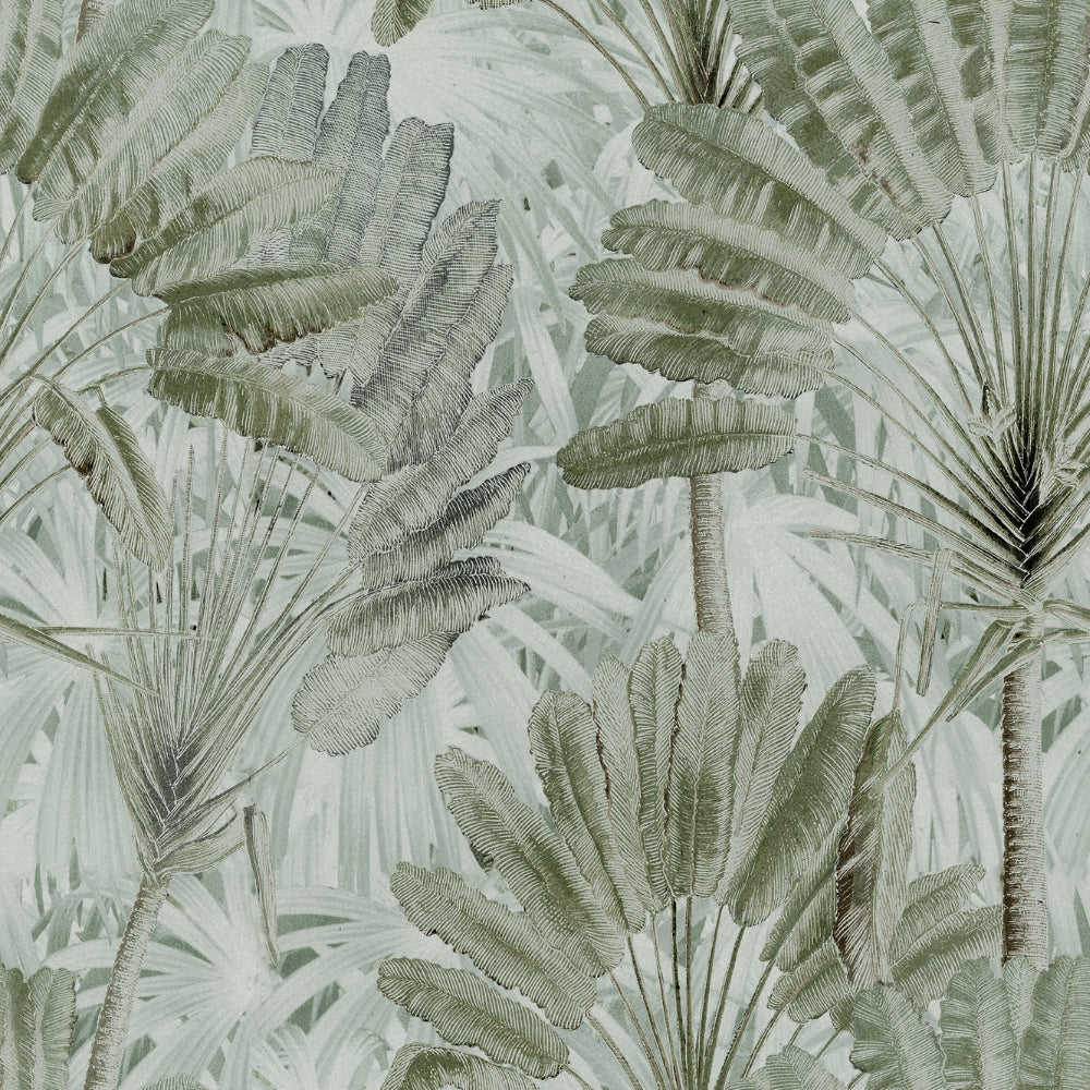 Traveller's Palm Wallpaper - Compendium Collection by MINDTHEGAP | Do Shop