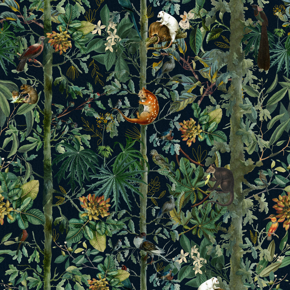 Wildlife Of Papua Wallpaper - Compendium Collection by MINDTHEGAP | Do Shop