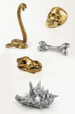 Wunderkammer Wolf Skull - Wolf This Way - Diesel - Seletti - Do Shop