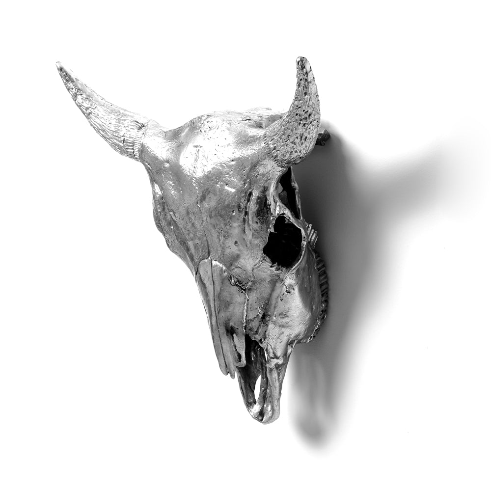 Wunderkammer Bison Skull - I Am Horny - Seletti Wears Toiletpaper - Do Shop
