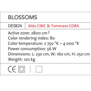 Blossoms - OLED Light - Blackbody - Do Shop