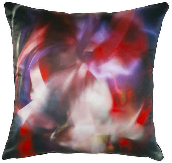 Cat Dragon Rose Cushion
