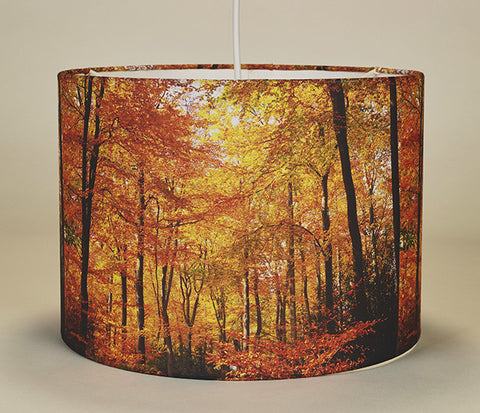 Alice's Walk Lampshade