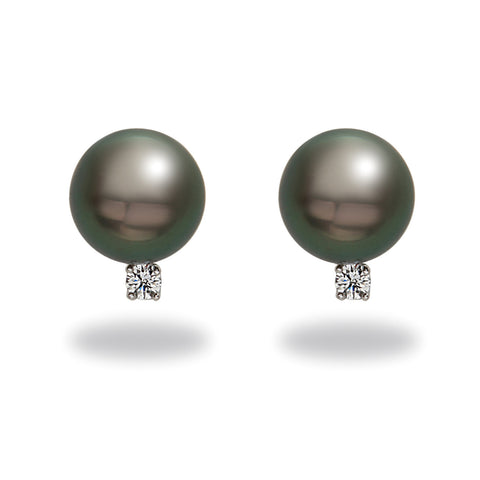 10-11mm Golden South Sea Pearl Stud Earring