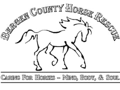 bergen-county-horse-rescue