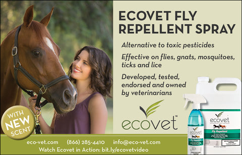ecovet-fly-spray-new-scent
