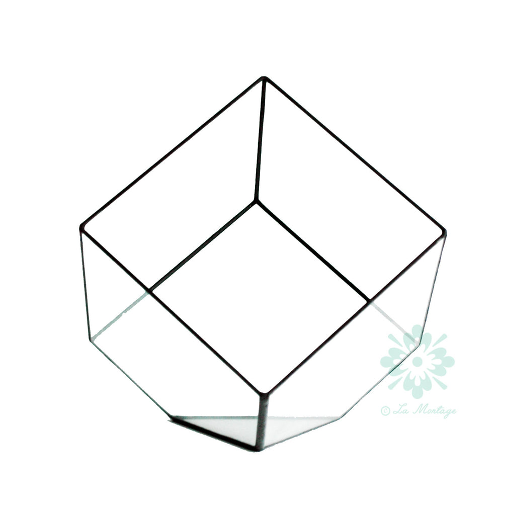 "Big Black Tilted Cube Geometric Glass Terrarium. 12""H"