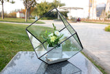 "Medium Black Tilted Cube Geometric Glass Terrarium. 8.5""H"