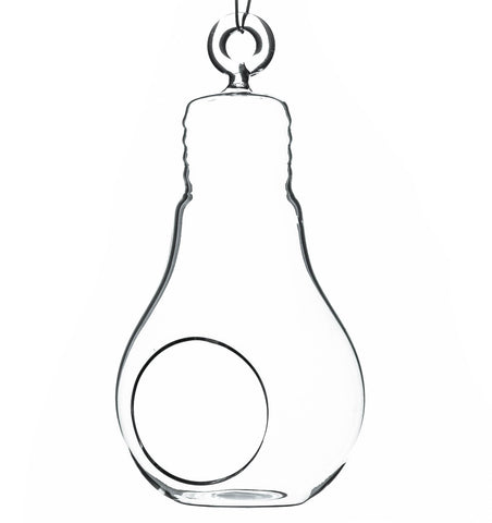 "6"" Light Bulb Hanging Terrarium (Set of 6) - CH0606"