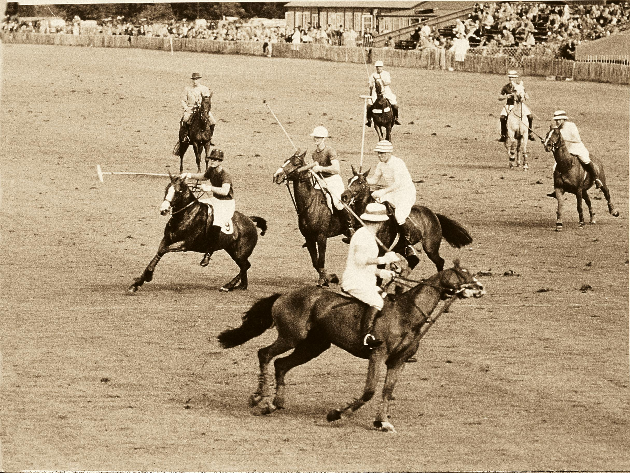 B&W image of a polo match in Jaipur from the 1930s in The Flippin' History of the Reverso for A Collected Man