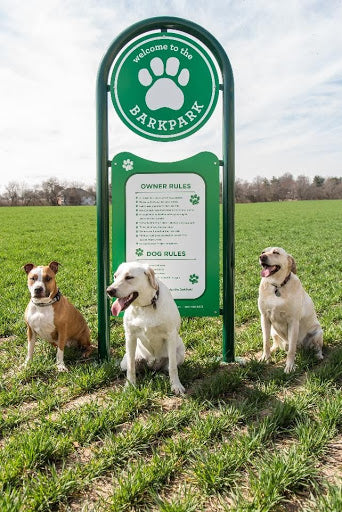 How to Maintain Your Dog Park