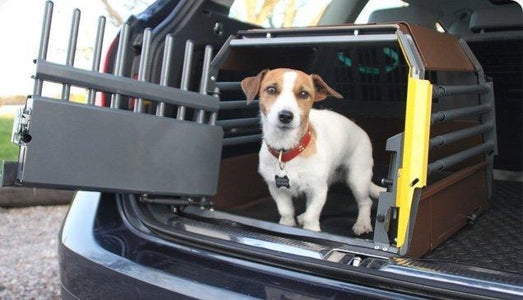 Variocage: The Best Dog Travel Crate for Pet Travel