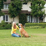 PetSafe Stay+Play Wireless Invisible Fence Extra Collar Rechargeable
