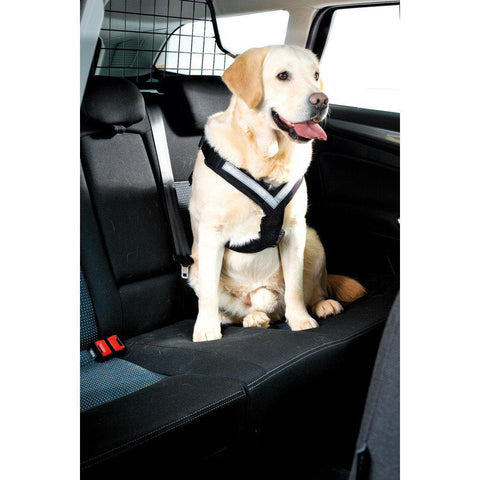 KleinMetall AllSafe Car Safety Dog Seat Belt Harness - Pet Pro Supply Co.