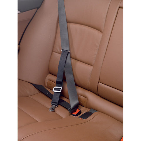 Buy Kleinmetall Allsafe Car Safety Dog Seat Belt Harness