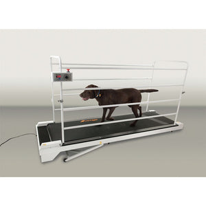 GoPet Petrun PR730 Encloseable Treadmill for Large Dogs up to 264 lbs - Pet Pro Supply Co.