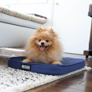 Accessories - Diggs Snooz - Orthopedic Dog Crate Pad - Pet Pro Supply Co