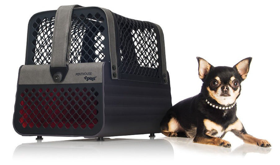 4Pets Penthouse TUV Crash Tested Dog Pet Car Carrier