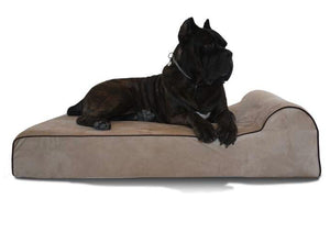 Bully Bed Orthopedic, Washable & Waterproof Big Dog Beds - Pet Pro Supply Co. - Pet Pro Supply Co