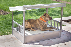 New Age Pet MALIBU Patio Pet Bed - Pet Pro Supply Co. - Pet Pro Supply Co