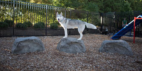 Dog Park - BarkPark By Ultrasite Nature Bark – Stepping Boulders