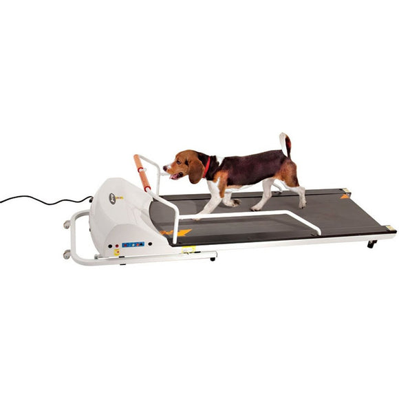 GoPet Petrun PR720F Treadmill for Dogs up to 132 lbs - Pet Pro Supply Co.