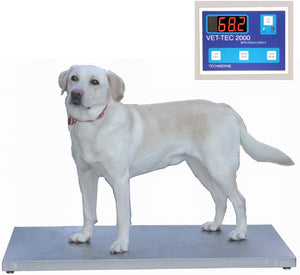 VetLine Digital Walk-On Weigh Scale - Pet Pro Supply Co. - Pet Pro Supply Co