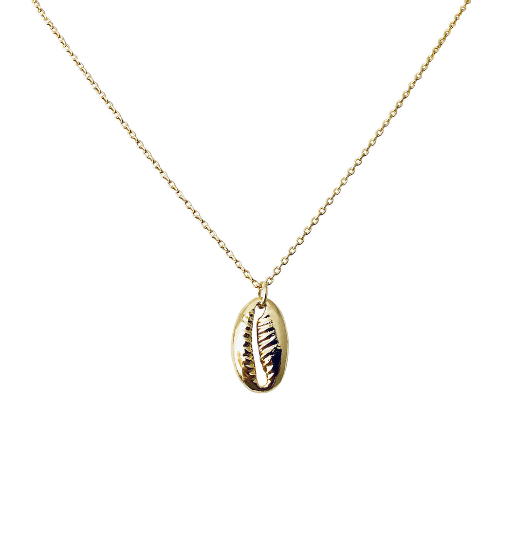Cowrie Shell NK20116