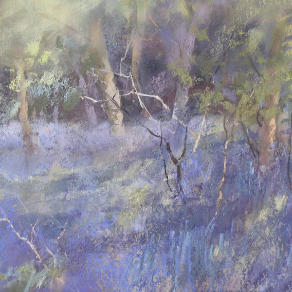 Bluebells at Westonbirt Print by Jane Lampard