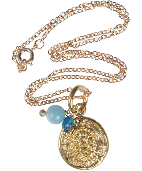 Turtle Coin Necklace with Amazonite & Apatite