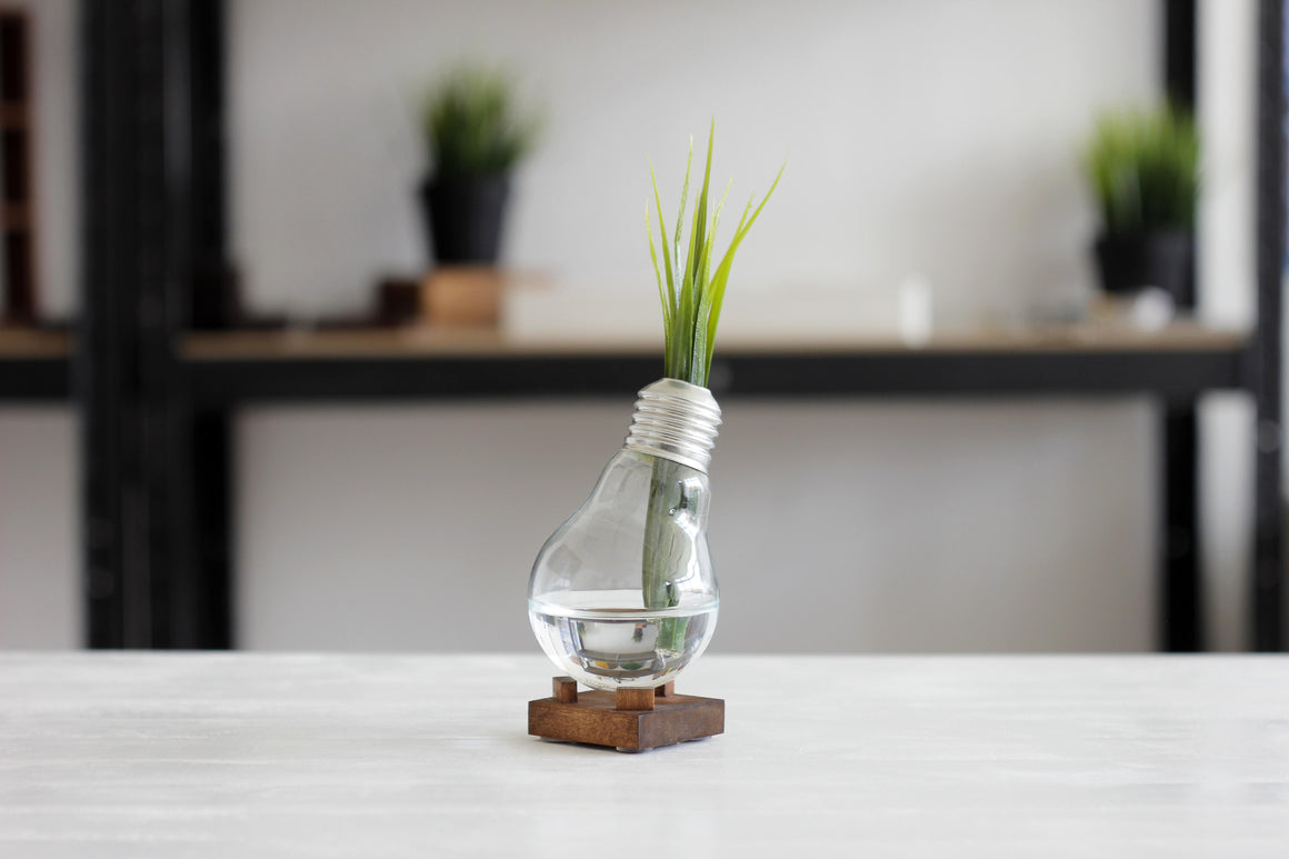 ALPHA anti-stress bulb