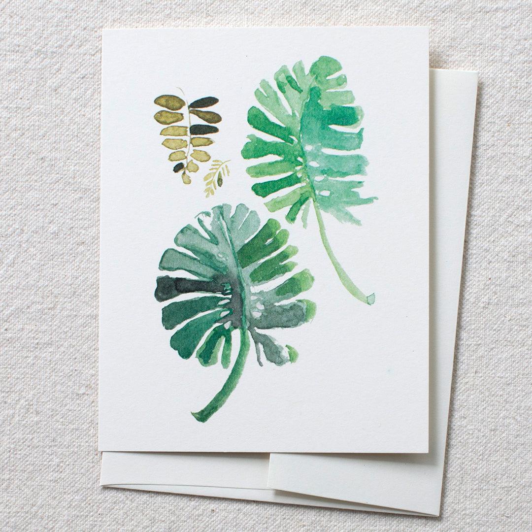 Fern + Monstera