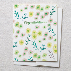 Mini Daisies, Congratulations