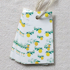 Citrus Pattern Gift Tags, Set of 10
