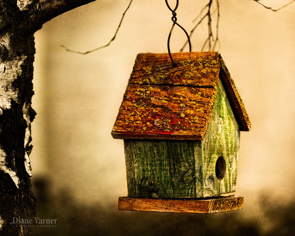 Finally Home - Diane Varner Art ~ Photography ~ Fine Art Prints
