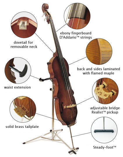 Eminence® Electric Upright Bass - Standard, removable neck