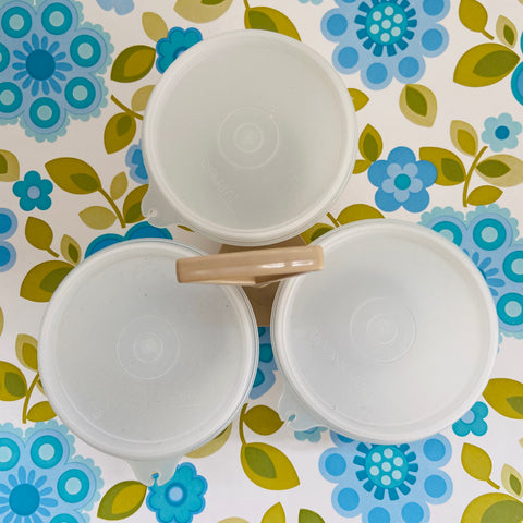 Tupperware Containers TRIO Entertaining 70's Camping Caravan PICNIC