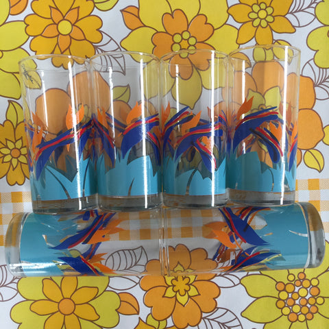Vintage BOXED Tumblers Six Retro Caravan Kitchen GLASSES