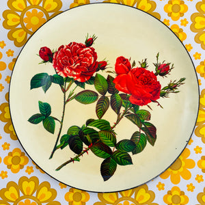 CUTE Roses Vintage TRAY Display Kitchen RETRO Decor