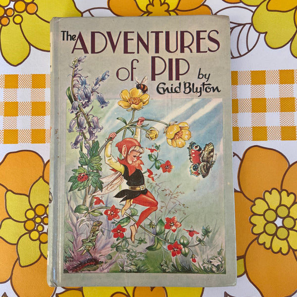 ENID BLYTON The Adventures of PIP 1968 Collectable