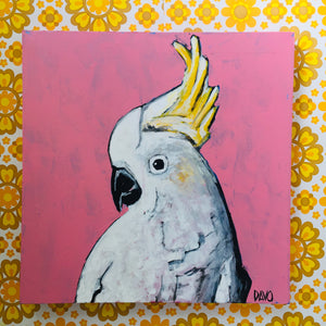 COCKATOO Bird Mixed Media on Canvas ORIGINAL Painting